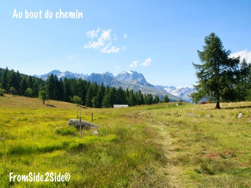 En France aussi : à la claire fontaine sur les pentes de Puy Saint-Vincent (Hautes Alpes)