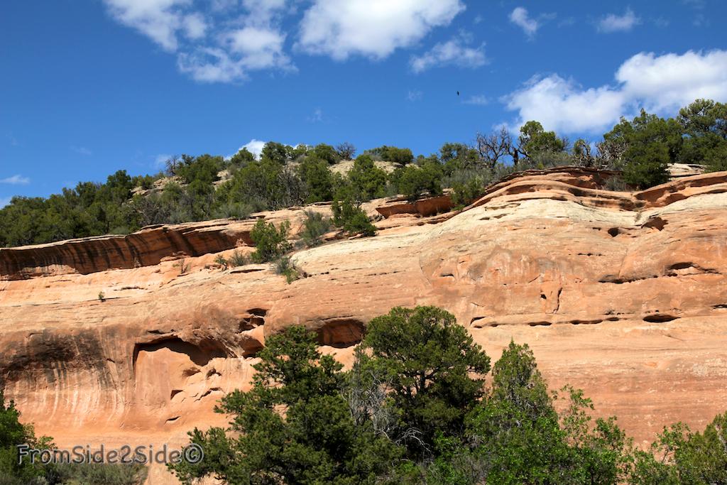 Colorado NM 9