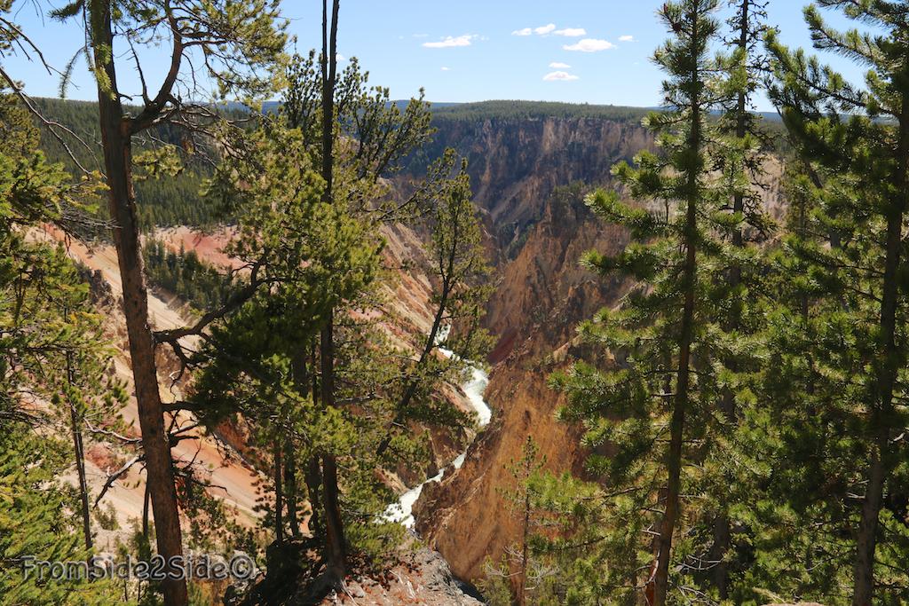 Grand Canyon Yellowstone 1